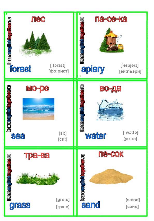 природа в английских карточках