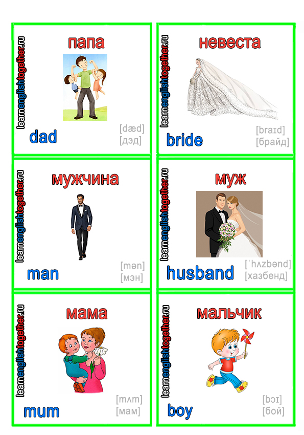 карточки английского языка семья